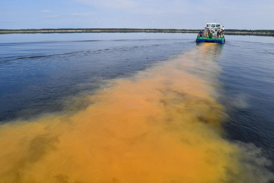 Störmthaler See bei Leipzig wird mit 2250 Tonnen Kalk neutralisiert