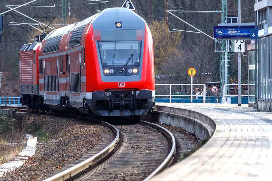 Mit der S-Bahn fuhr ein Kind durch die Sächsische Schweiz.