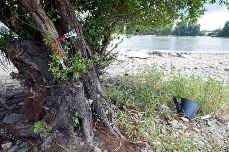 Ein Stück Absperrband der Polizei markiert den Ort, an dem im Juli 2016 am Rheinufer in Köln Leichenteile in einem Plastiksack gefunden wurden.