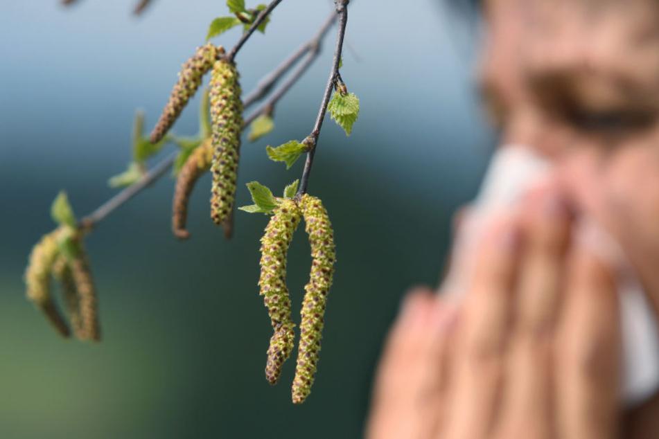 Für Allergiker hat der Sommer auch immer eine nervige Seite.