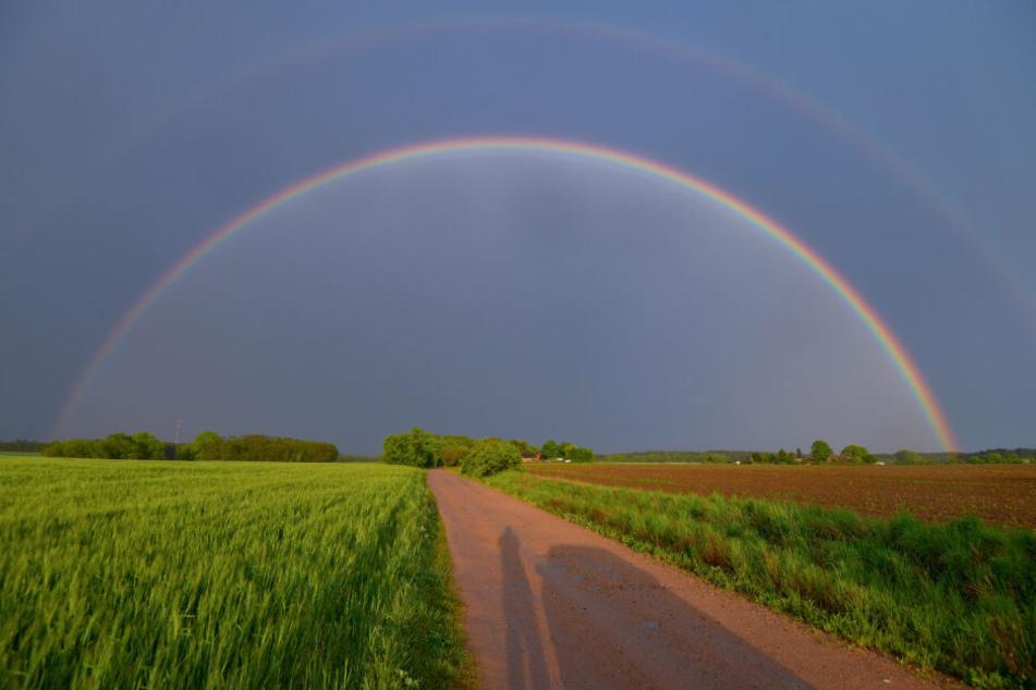 Am Sonntag wartet ein Mix aus Schauern und Sonne - werde wir Zeuge von traumhaften Regenbögen?