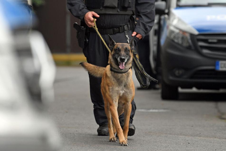 Der Polizeihund war nach der Attacke im Dezember 2015 eingeschläfert worden (Symbolbild).