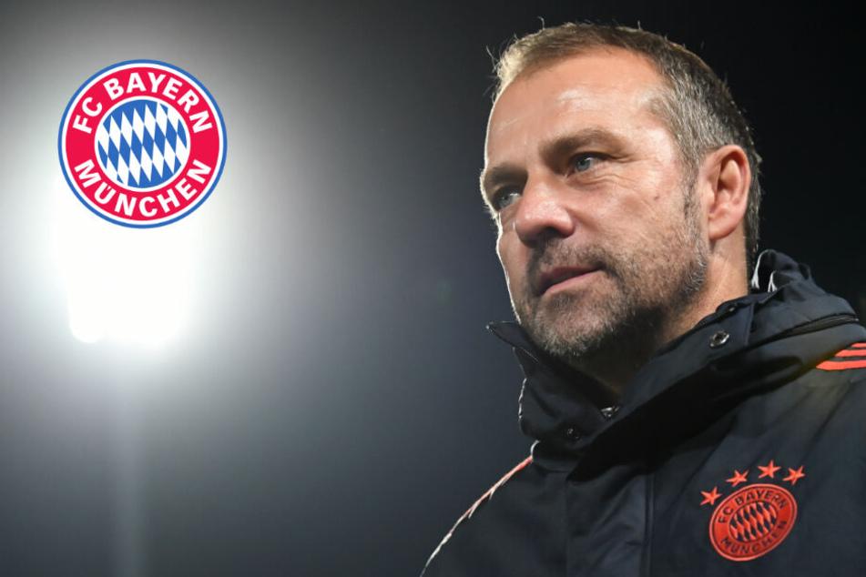 Trainerspekulationen beim FC Bayern: Hansi Flick begeistert von einem Kandidaten