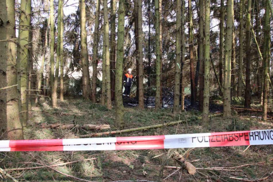 Das Kleinflugzeug stürzte über einem Waldgebiet nahe Maxhütte-Haidhof in der Oberpfalz ab.