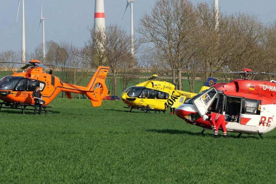 Gleich mehrere Rettungshubschrauber landeten an der Unfallstelle.