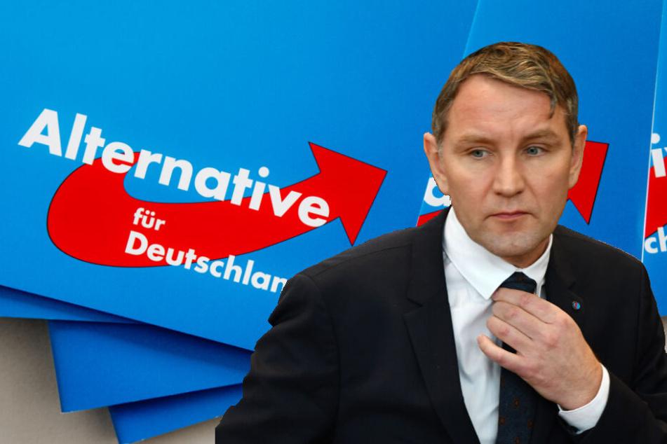 Björn Höcke wurde 608 mal im Gutachten des Verfassungschutz erwähnt. (Bildmontage)