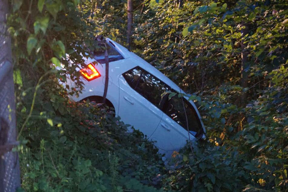 Nachdem sie einen Zaun durchbrochen hatte, steckte die Fahrerin mit ihrem Kleinwagen im Gebüsch fest.