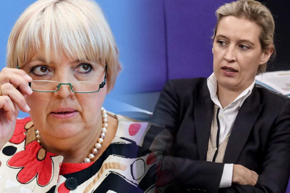 """""""Sie haben Angst"""": Das hat sich durch die AfD im Bundestag geändert"""