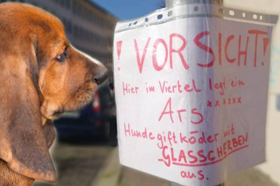 Gefahr für Leipzigs Hunde: Wieder Giftköder mit Glasscherben entdeckt!