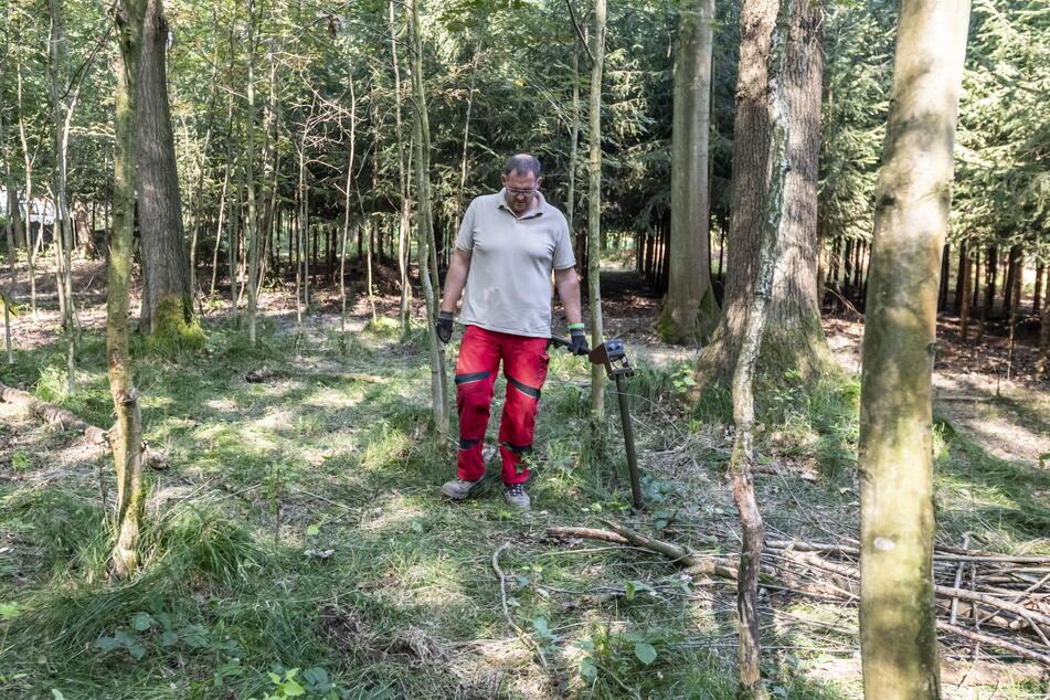 Um das Risiko durch Munition abzuschätzen, untersuchen Spezialisten wie Renè Knab mit Metallsuchgeräten den Boden - hier bei einem Einsatz in Auerswalde.
