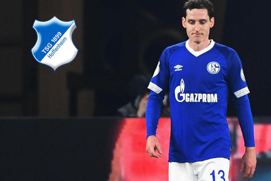 Abschied von Schalke? Rudy vor Rückkehr nach Hoffenheim!