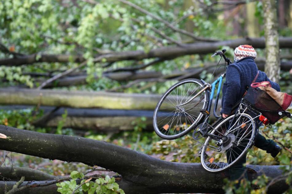 Windböen verursachen Verkehrsunfälle, Senftenberg, Lauchhammer, (OSL)
