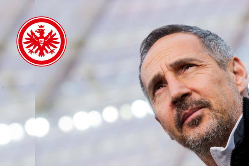 Eintracht will sich mit Sieg gegen Werder in Spitzengruppe etablieren