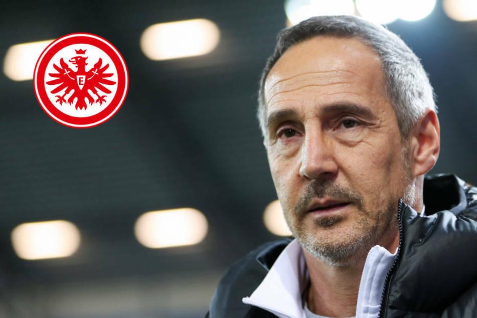 """""""Dürfen überhaupt keine Fehler machen"""": Eintracht mit viel Respekt zum FC Bayern"""