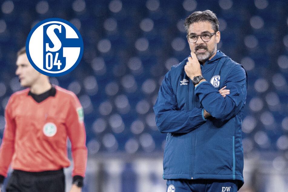 Schalke 04 wirft David Wagner raus: Trainer fliegt nach Horror-Serie!