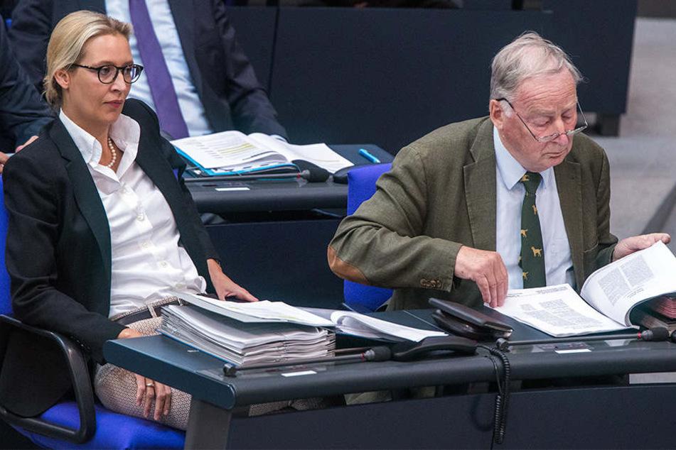Bekommen auch Alice Weidel und Alexander Gauland, Fraktionsvorsitzende der AfD, künftig Zulagen?