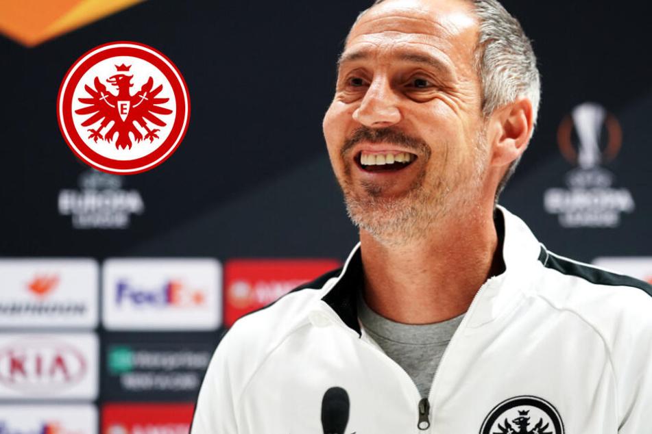 """Eintracht vor Euro-League-Match in London kämpferisch: """"Ziel ist es, hier etwas geholt zu haben"""""""