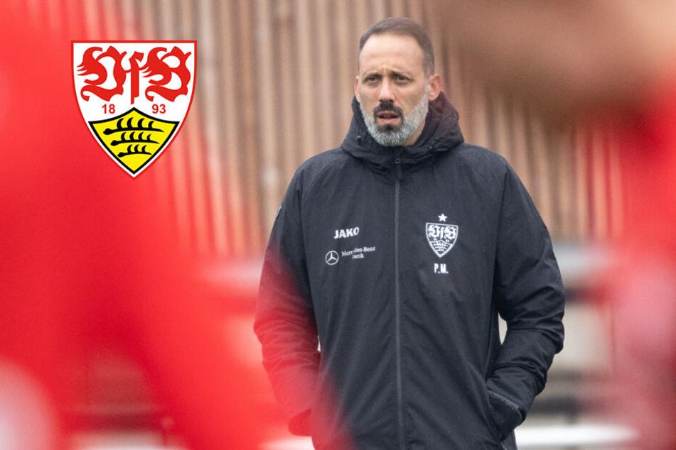 Matarazzo braucht noch Zeit, um den VfB-Profis den Walter-Ball abzugewöhnen