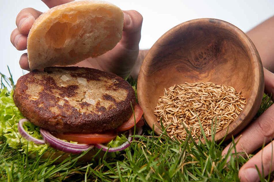 Das Burgerfleisch besteht zu rund fünfzig Prozent aus Buffalo-Würmern (Getreideschimmelkäferlarven).
