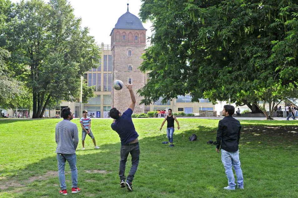 Das Rathaus will im Stadthallenpark das Ballspielen (F.) verbieten. So sollen  das Grün und die Blumenbeete vor Zerstörung bewahrt werden.