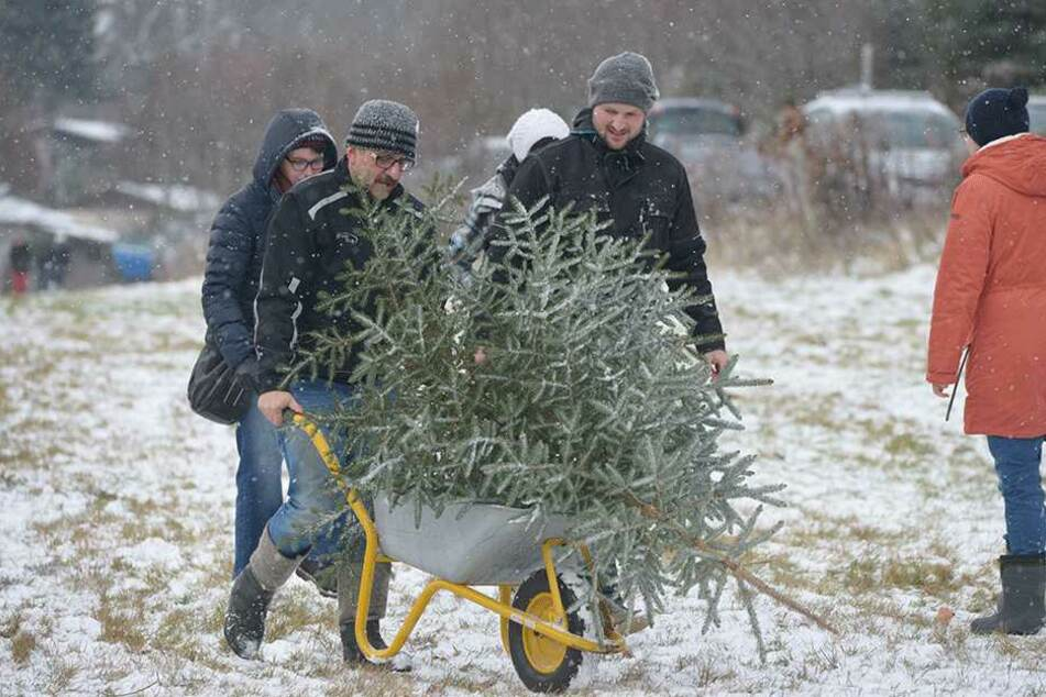 Mit der Schubkarre geht's schneller. Die Chemnitzer wussten sich im Schneesturm zu helfen.