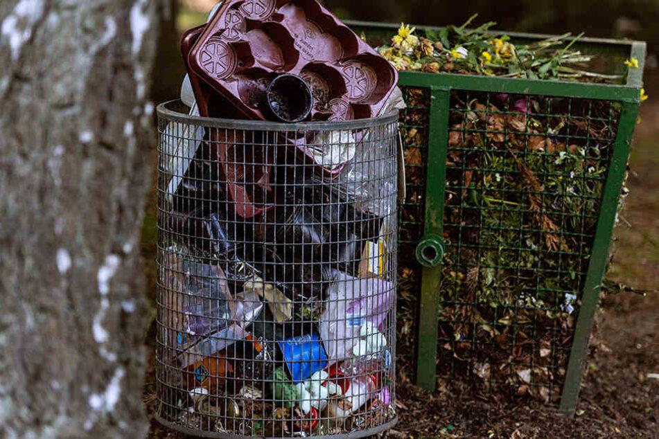 Volle Mülleimer lassen vermuten, dass hier nicht übertrieben oft nach dem Rechten gesehen wird.