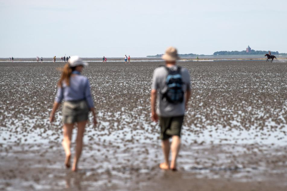 Touristen sind im Watt bei Cuxhaven unterwegs. (Archivbild)