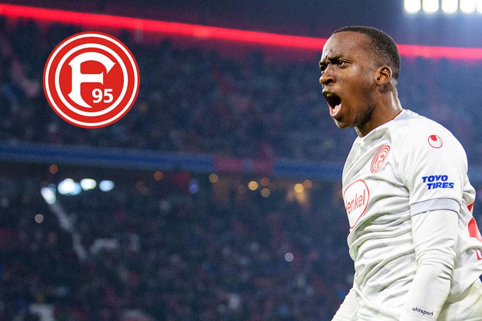 Er zerstörte Bayern im Alleingang: Wer ist Shooting-Star Dodi Lukebakio?