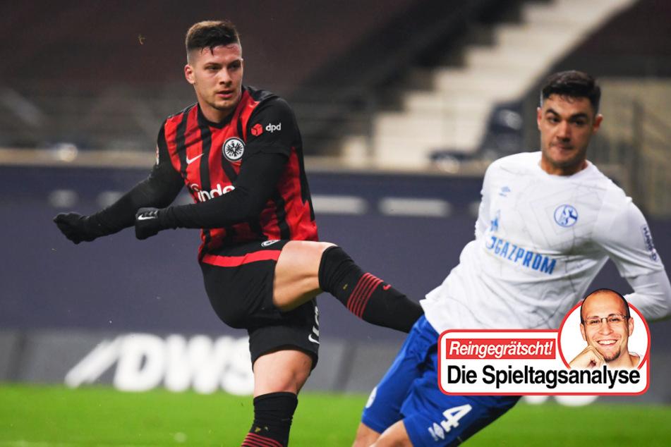 Kolumne zu Schalke: So schnell kann es gehen! Knappen wieder Tabellenletzter