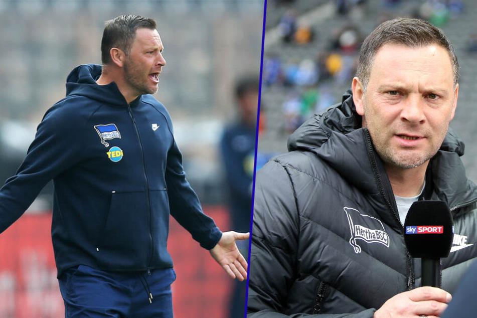 Pal Dardai ist seit 2015 Trainer bei Hertha BSC. (Bildmontage)