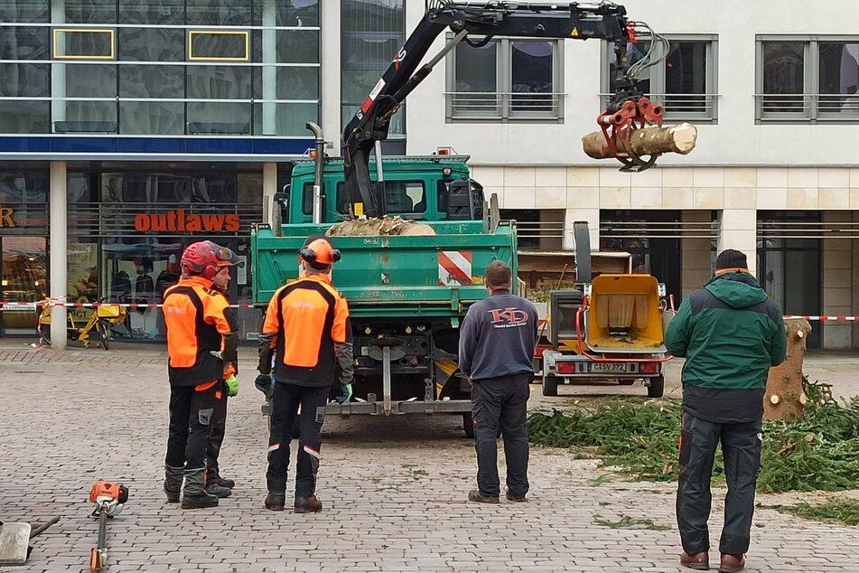 Vier Mitarbeiter vom Grünflächenamt verladen die nutzlosen Stamm-Stücke auf einen Lkw.