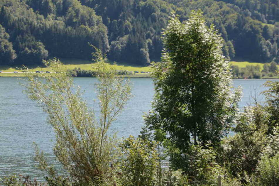 Im Alpsee im Allgäu kam es zu einem tödlichen Badeunfall.
