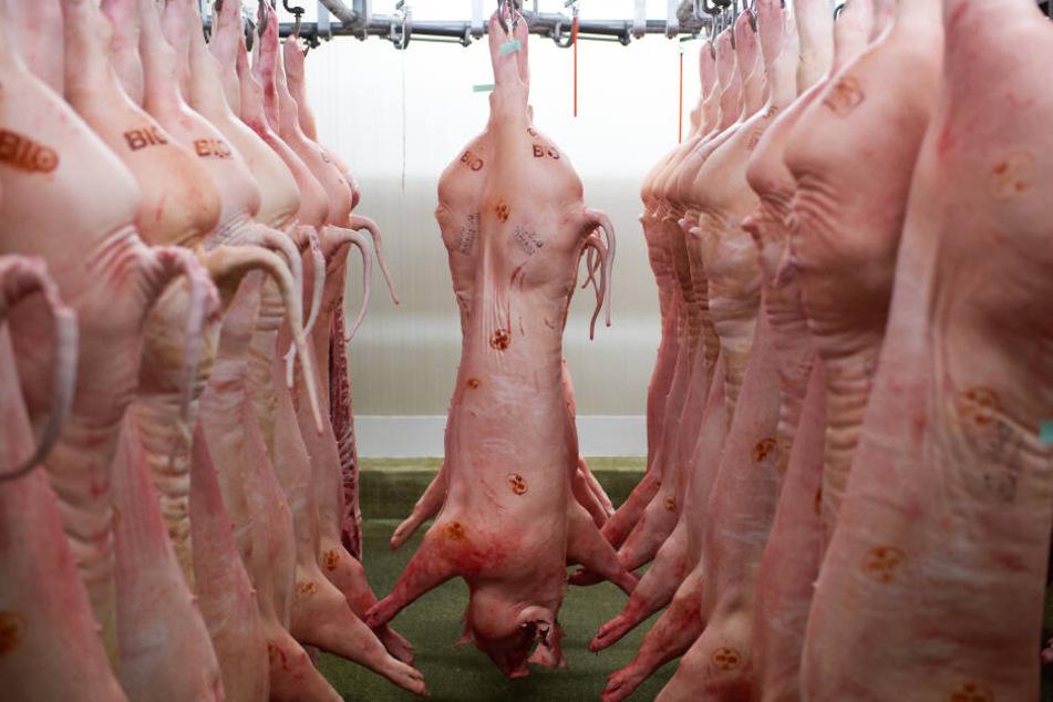 Tierische Fette aus Schlachtabfällen sorgen für kuschelweiche Wäsche.