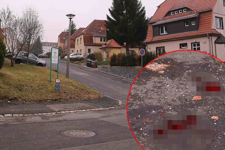 Streit in Freital eskaliert! Zwei Männer nach Messerstecherei schwer verletzt