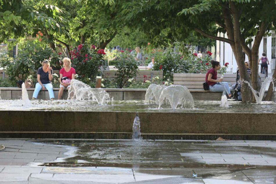 Wasserschaden im Rosenhof: Die Umrandung eines Wasserspiels ist nicht mehr ganz dicht.