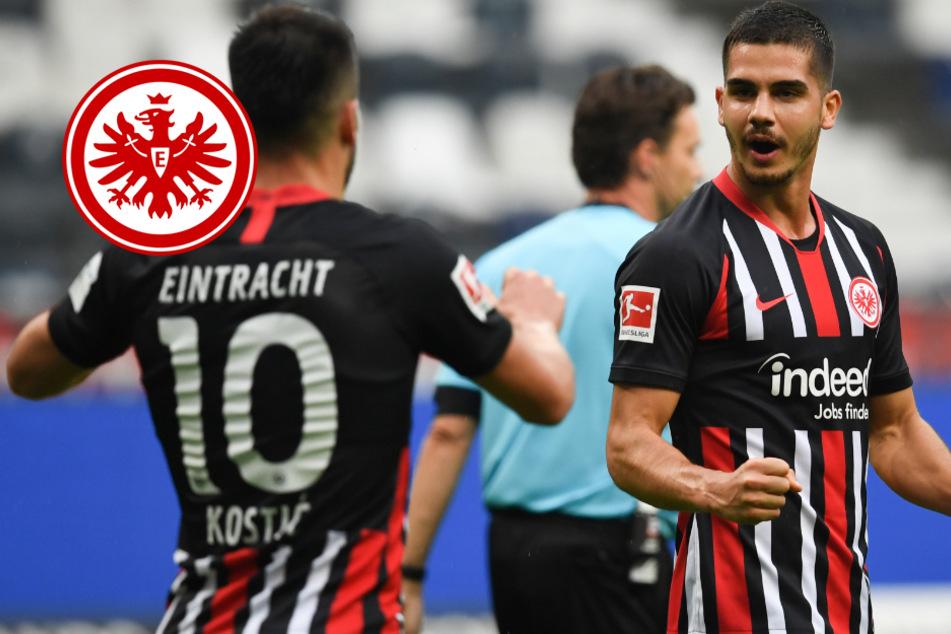 Europa weiter im Blick: Silva und Abraham besiegeln Eintracht-Sieg gegen Schalke