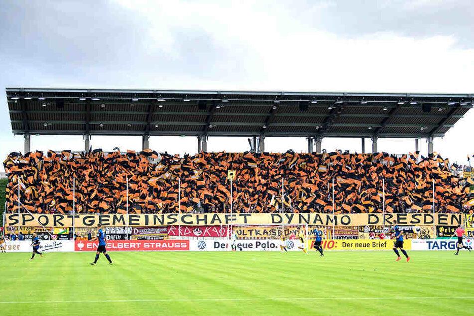 Wie schon vor zwei Jahren im Spiel gegen TuS Koblenz werden auch am Sonnabende wieder viele Dynamo-Fans im Zwickauer Stadion sein.