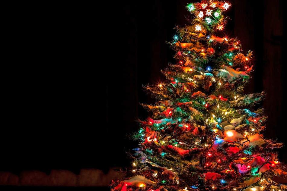 Beim Schmücken eines Christbaums sind fünf junge Menschen tödlich verunglückt.