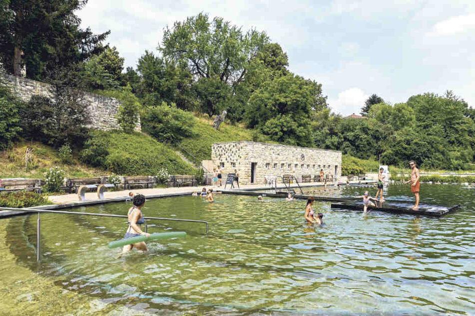 Das Zschonergrundbad darf auf 80000 Euro Zuschuss hoffen.