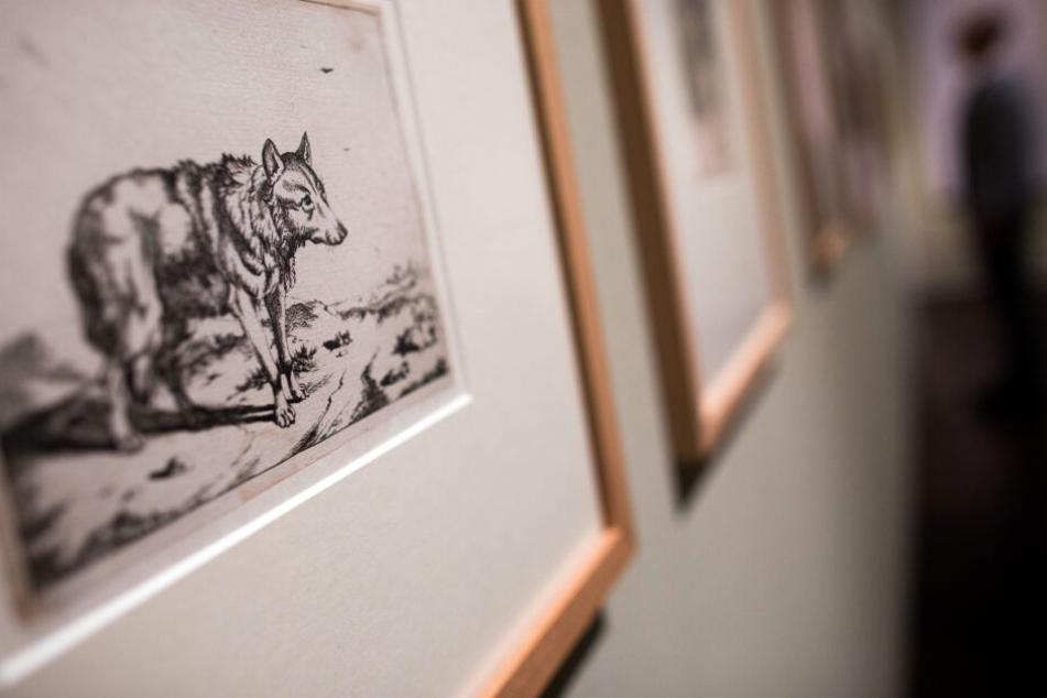 Eine Wolfsdarstellung des Künstlers Marcus de Bye hängt im Wallraf-Richartz-Museum.