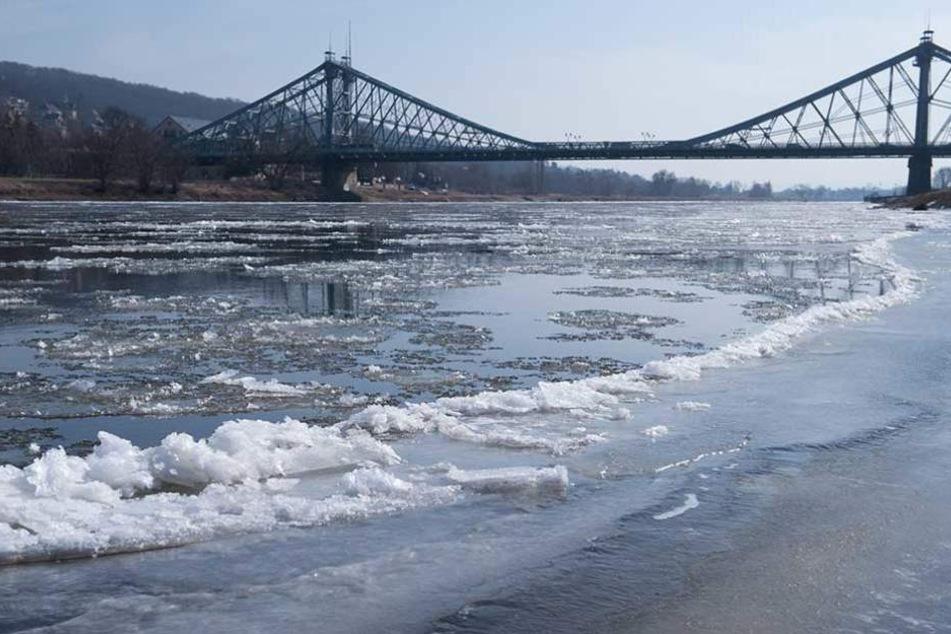 Die Elbe in Dresden friert immer weiter zu.