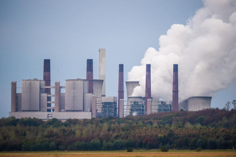 Das Braunkohlekraftwerk Neurath.