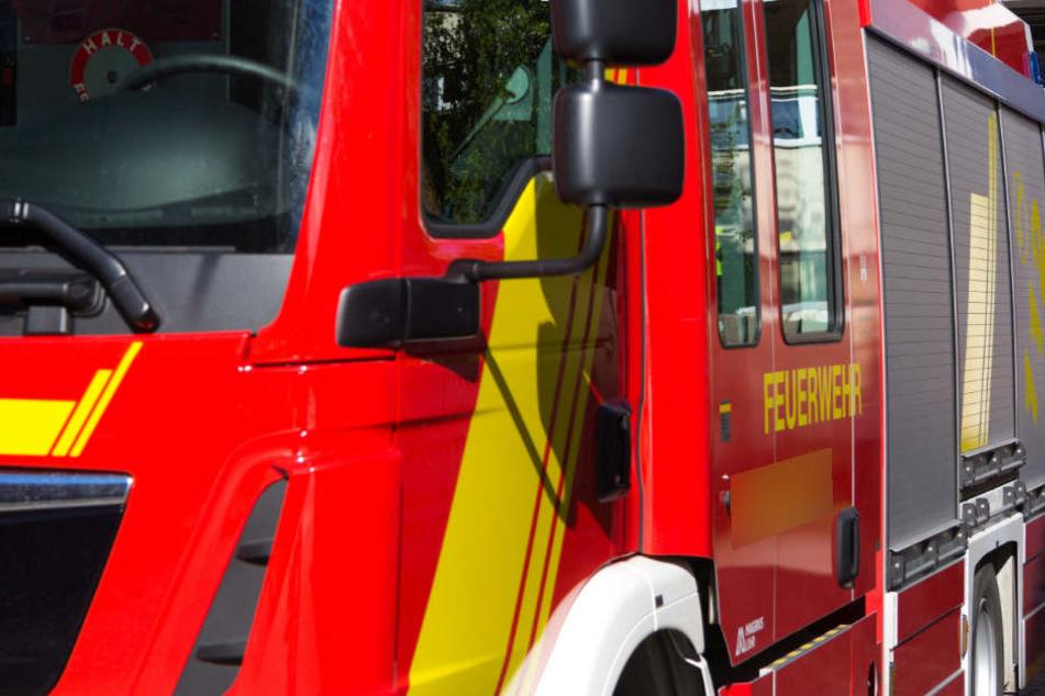 Die Feuerwehr konnte nicht mehr viel retten. (Symbolbild)