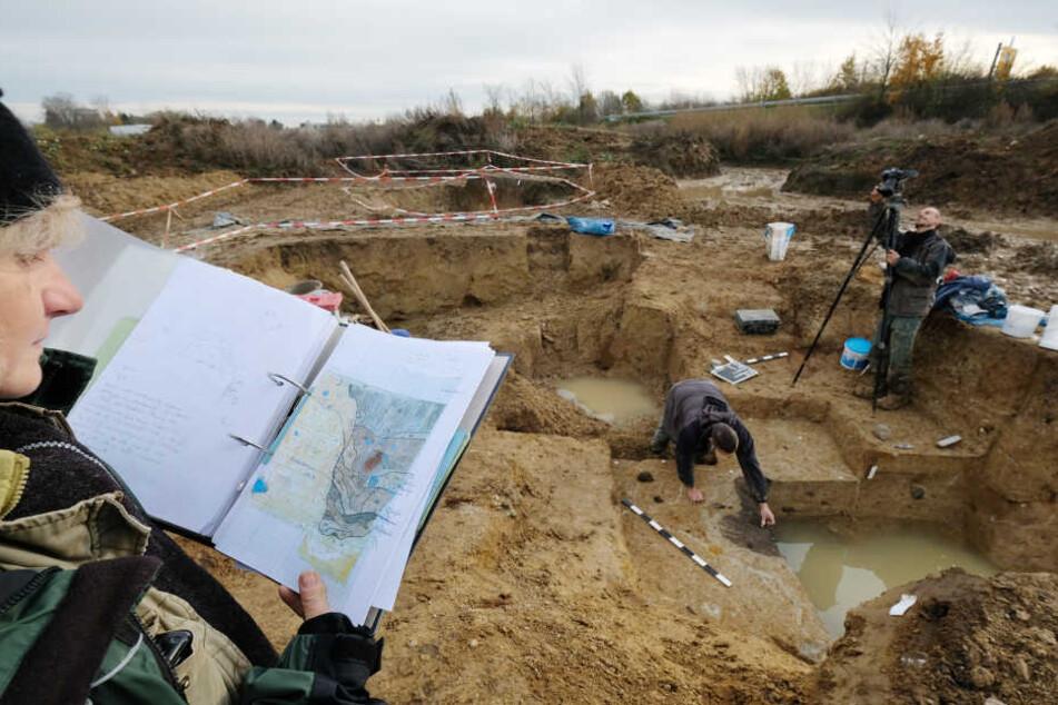 Grabungshelfer arbeiten am 22.11.2016 in Schkeuditz bei Leipzig (Sachsen) an einem Siedlungsareal aus der Jungsteinzeit.