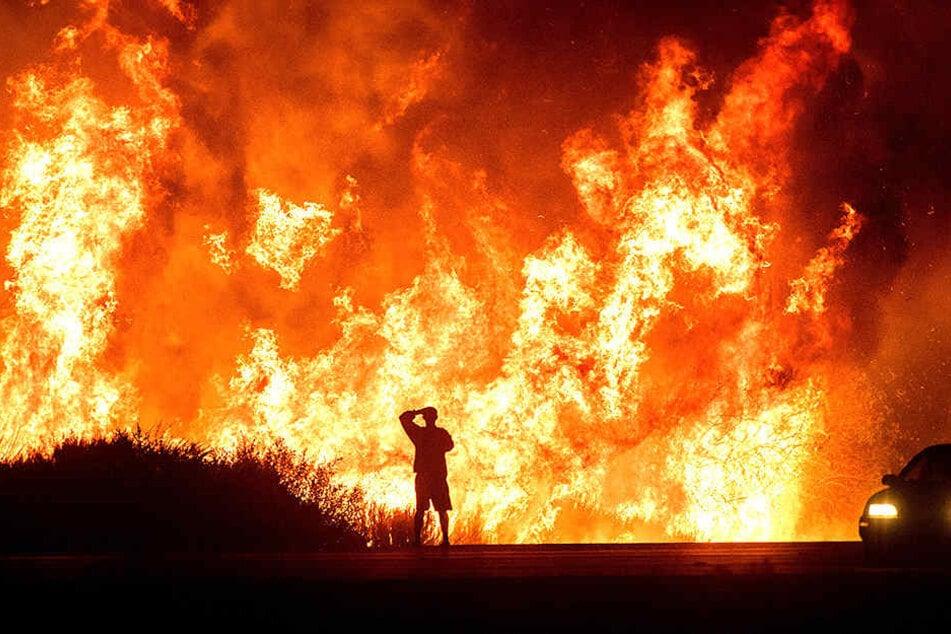 Ein Autofahrer betrachtet das riesige Buschfeuer in Los Angeles.