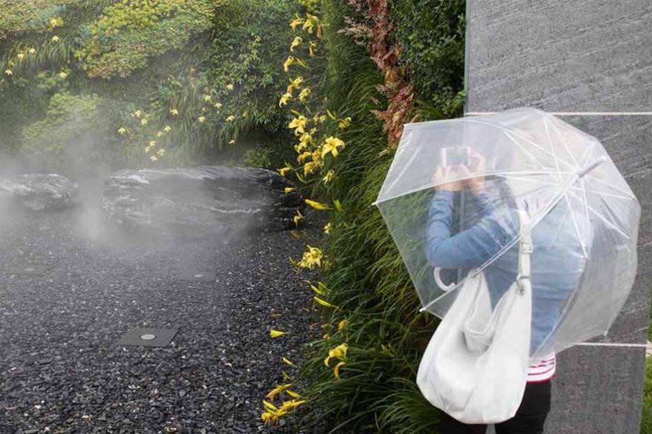 Bei Regenwetter haben wenig Menschen Lust auf Gartenausstellung.