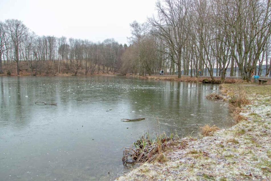 Ein Teich zugefrorener Teich im Erzgebirge: Doch die Eisdecke ist nur wenige Zentimeter dick. Eine tödliche Falle.