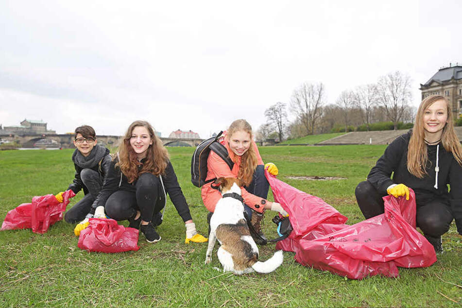 Großreinemachen: Franz (14, v.l.), Isabel (14), Jasmin (14) mit Hündchen  Rufus (7) und Tibby (15) putzten gemeinsam die Elbwiesen.