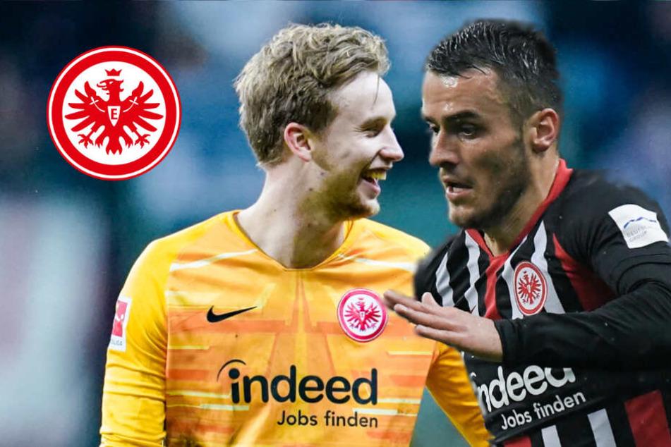 Sieg der Eintracht: So wichtig waren Rönnow und Kostic