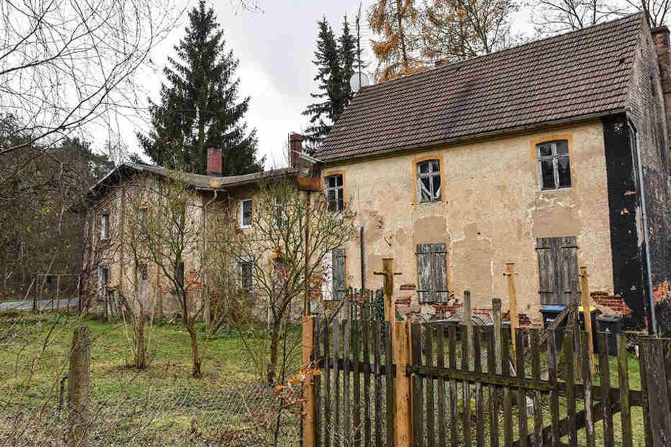 Das Dorf Alwine wurde tatsächlich versteigert.